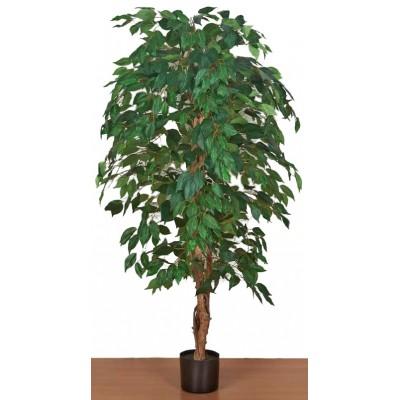 Διακοσμητικά Φυτά - Τεχνητό Φυτό Μπένζαμιν με Φυσικό Kορμό. 150εκ. Φυτά Είδη Σπιτιού - saroglouhome.gr