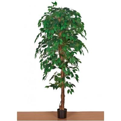 Διακοσμητικά Φυτά - Τεχνητό Φυτό Μπένζαμιν με Φυσικό Kορμό. 180εκ. Φυτά Είδη Σπιτιού - saroglouhome.gr