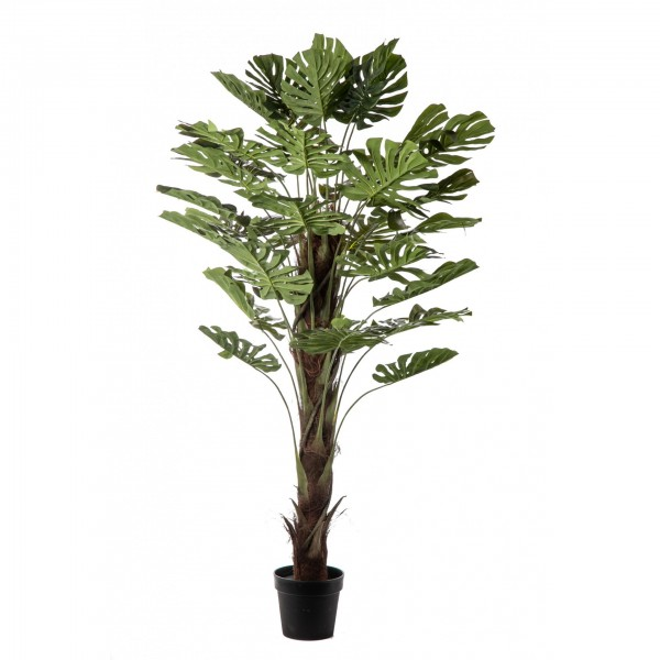 texnito fyto real touch monstera