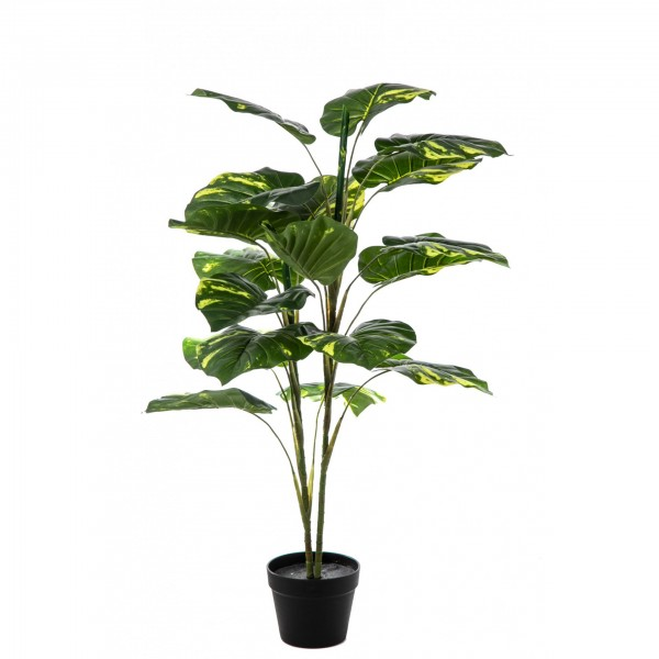 texnito fyto real touch pothos
