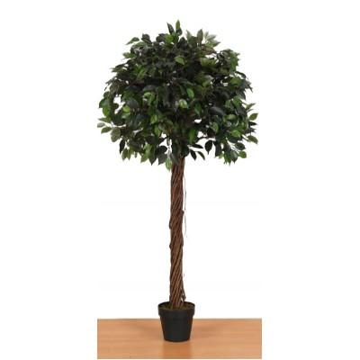 Διακοσμητικά Φυτά - Τεχνητό Φυτό Μπένζαμιν σε σχήμα μπάλας  165εκ.  Φυτά Είδη Σπιτιού - saroglouhome.gr