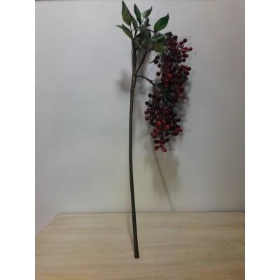 kladi-berries